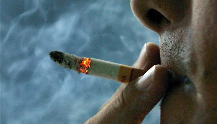 cigarronovahor175