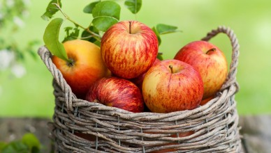 Red-apples-fruit-basket_2560x1600