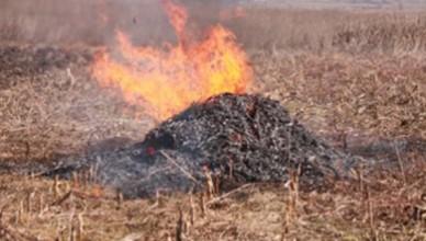 Arderea-deseurilor