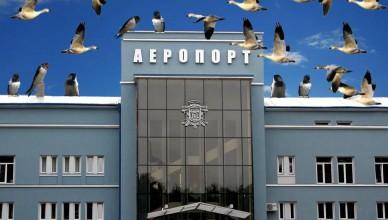 1510323926-6631-aeroport-chernivtsi