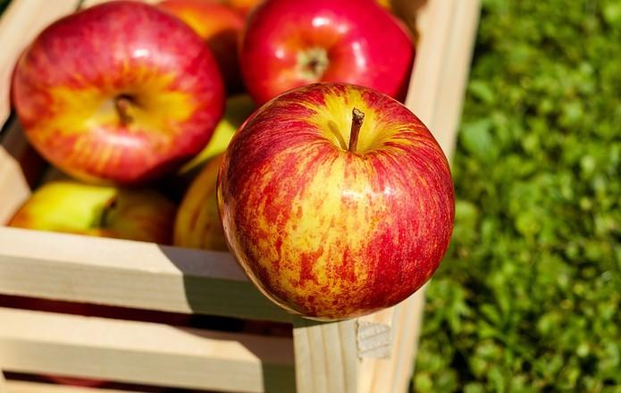 522de99-apple