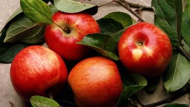 Apples_1600x1200