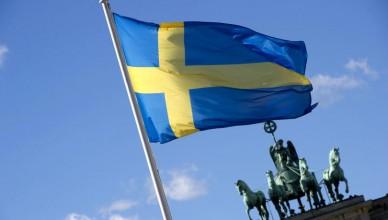steagul-suediei