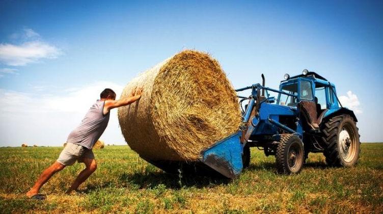 Fermerstvo-v-Ukraine