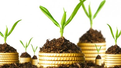 economic-gardening1