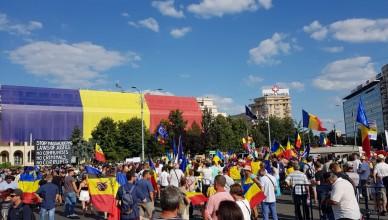 protest-diaspora-argesplus.ro_