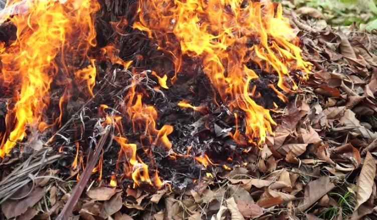 Arderea frunzelor este periculoasă în perioada de toamnă