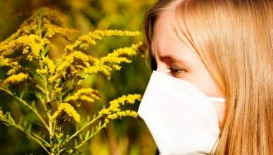 alergii-e1463154065991