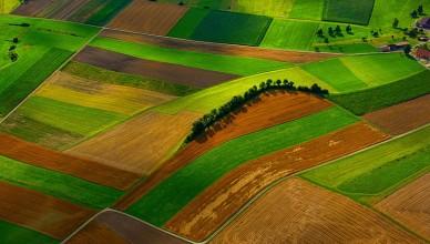 teren-agricol3