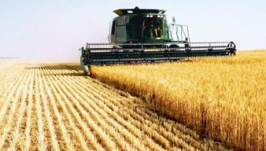 sectorul-agrar-din-moldova-se-redreseaza