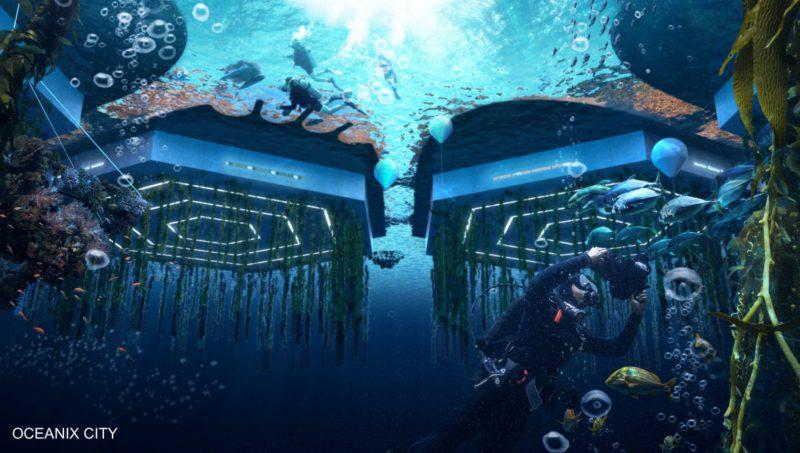 oras-plutitor-3-800x453