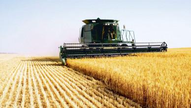 seceta-a-dus-la-reducerea-recoltei-de-cereale-cu-30-10771