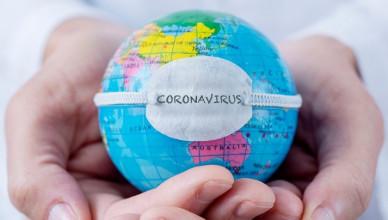 coronavirus_11336200