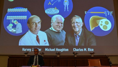Nobel Committee member Patrik Ernfors sits in front of a screen displaying the winners of the 2020 Nobel Prize in Physiology or Medicine, (L-R) American Harvey Alter, Briton Michael Houghton and American Charles Rice, during a press conference at the Karolinska Institute in Stockholm, Sweden, on October 5, 2020. Americans Harvey Alter and Charles Rice as well as Briton Michael Houghton win the 2020 Nobel Medicine Prize for the discovery of Hepatitis C virus.,Image: 561533489, License: Rights-managed, Restrictions: , Model Release: no